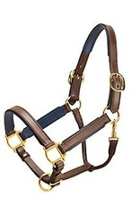 Tory Padded Leather Halter