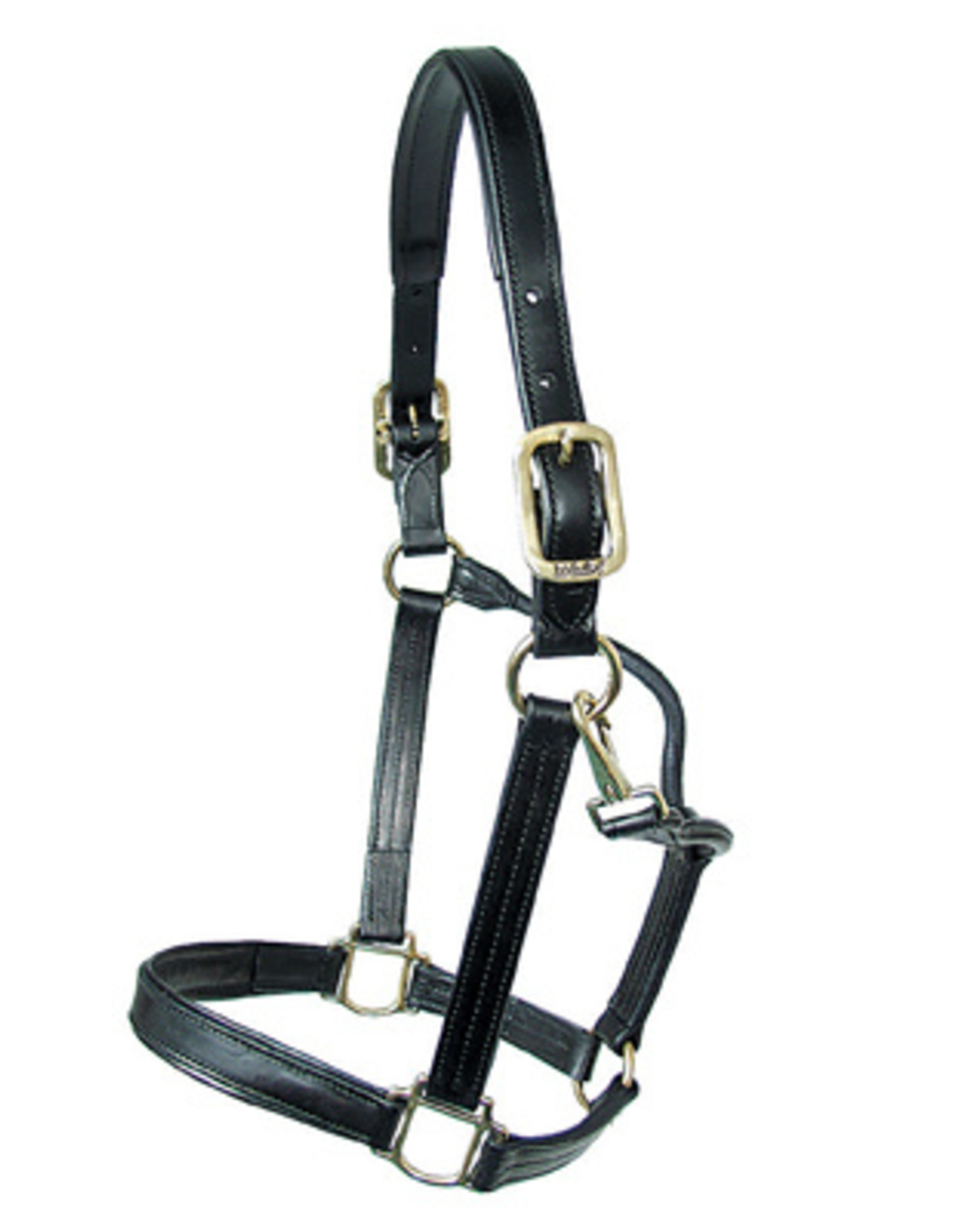 Walsh Padded Leather Dressage Halter