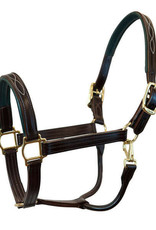 Walsh Signature Fancy Padded Leather Halter