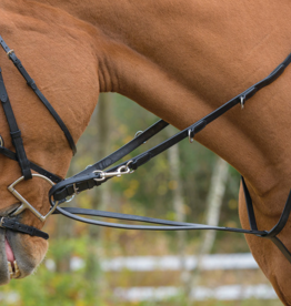 Shires German Martingale