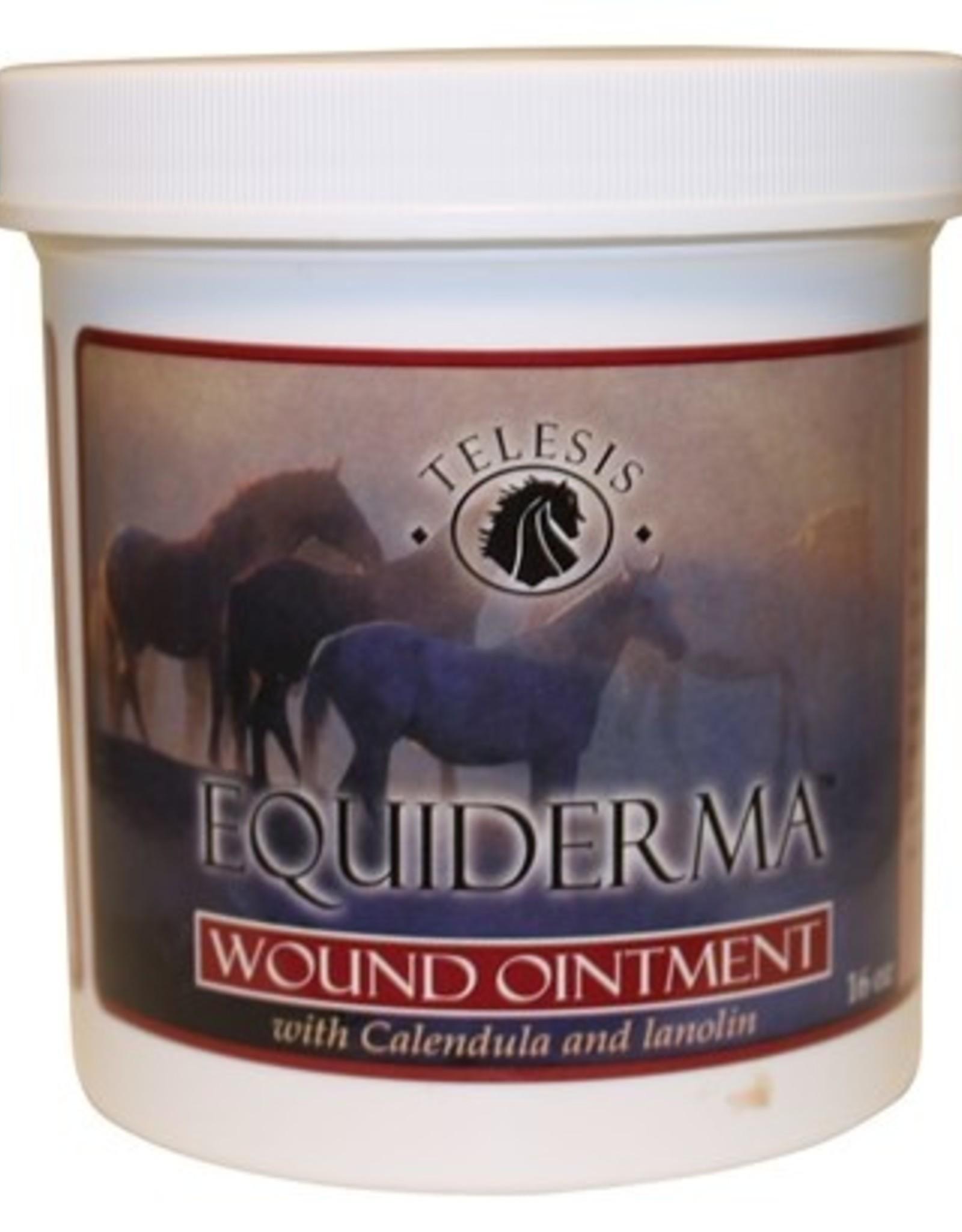 Equiderma Wound Oinment - 1lb