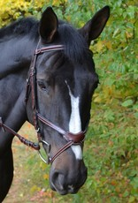 KL Select Chase Figure 8 Bridle
