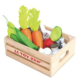 Le Toy Brand Vegetables Five-A-Day