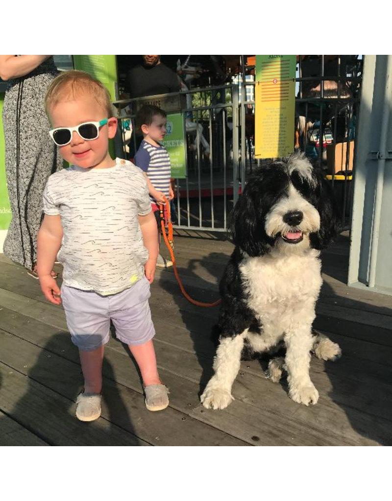 roshambo baby 90210 White & Teal Sunglasses