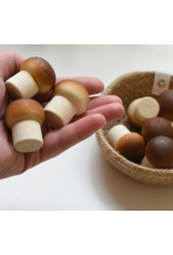 Erzi Mushroom