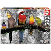 ED500 BIRDS IN THE JUNGLE