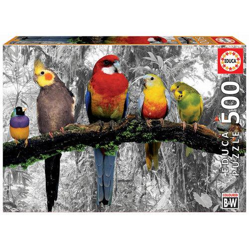 JOHN HANSEN COMPANY ED500 BIRDS IN THE JUNGLE