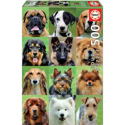 Educa ED500 DOGS COLLAGE