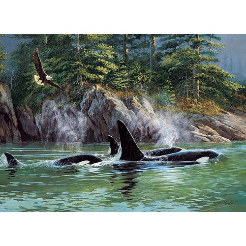 Cobble Hill CH1000 ORCAS