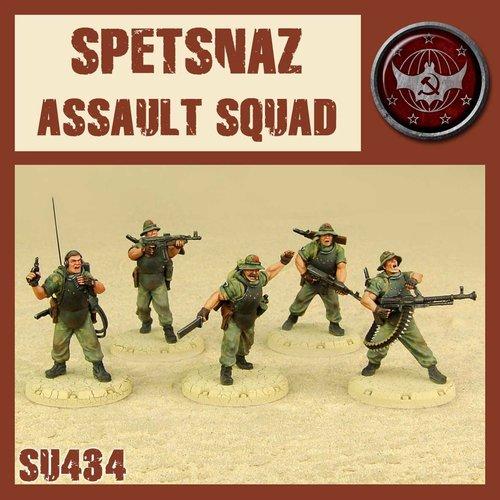 DUST USA DUST DROP-SHIP: Spetsnaz Assault Squad (Heavies)