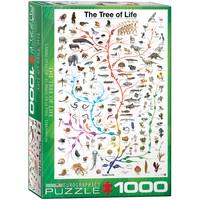 EG1000 EVOLUTION TREE OF LIFE