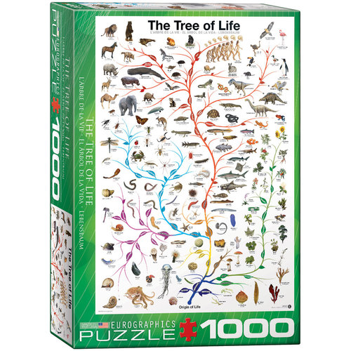 EUROGRAPHICS EG1000 EVOLUTION TREE OF LIFE