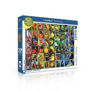 NEW YORK PUZZLE COMPANY NY1000 RAINBOW OF BIRDS