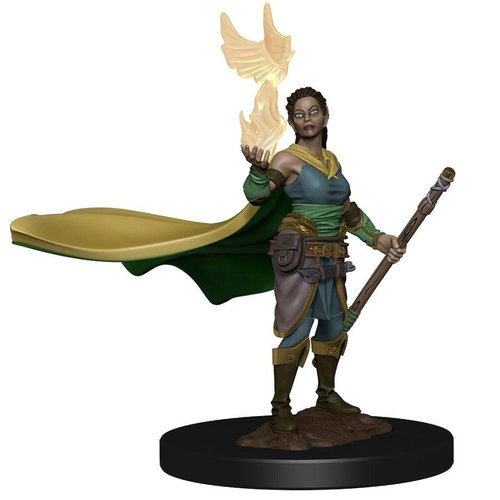 Wizkids MINIS: ICONS OF THE REALMS: ELF FEMALE DRUID