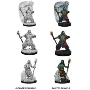 Wizkids MINIS: D&D: WATER GENASI MALE DRUID