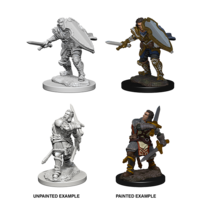 MINIS: D&D: HUMAN MALE PALADIN (SWORD & SHIELD)
