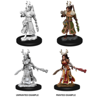 MINIS: D&D: HUMAN FEMALE DRUID