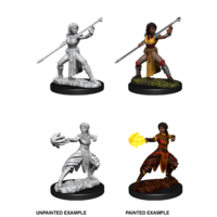 MINIS: D&D: HALF-ELF FEMALE MONK