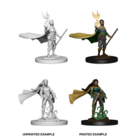 MINIS: D&D: ELF FEMALE DRUID