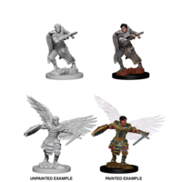 MINIS: D&D: AASIMAR MALE FIGHTER