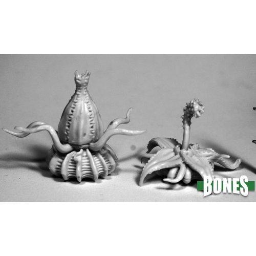 Reaper Miniatures BONES: DEATH STAR LILIES (2)