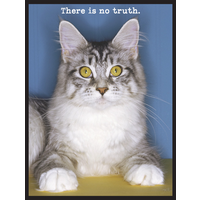 MAGNET: TRUTH KITTY