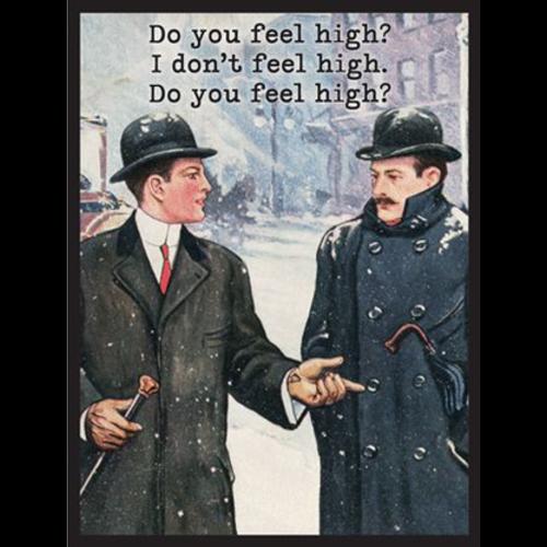 MAGNETIC POETRY MAGNET: FEEL HIGH