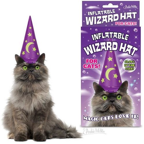 Archie McPhee INFLATABLE CAT WIZARD HAT