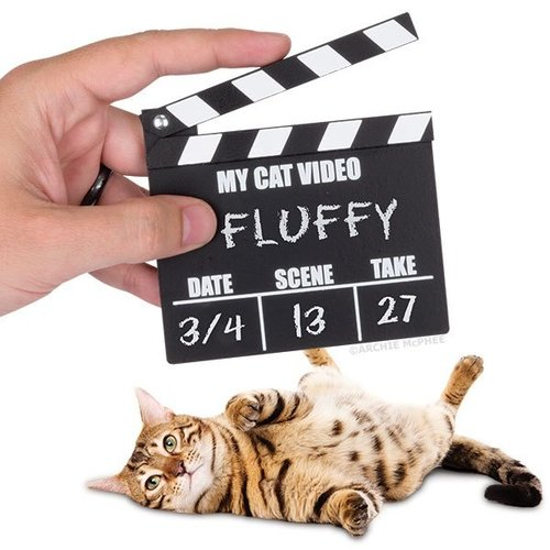 Archie McPhee CAT VIDEO CLAPPERBOARD