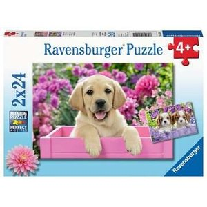 Ravensburger RV24(x2) ME & MY PAL