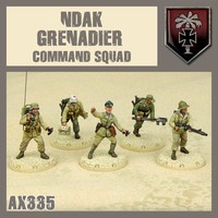 DUST 1947 AXIS NDAK GRENADIER HQ