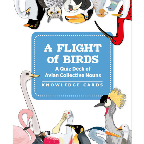 POMEGRANATE KNOWLEDGE CARDS: A FLIGHT OF BIRDS