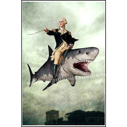 MAGIK MISSILE MAGNET: WASHINGTON ON SHARK