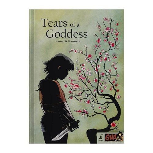 Van Ryder Games GRAPHIC NOVEL ADVENTURES: TEARS OF A GODDESS