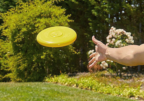 Frisbee-Style Disc
