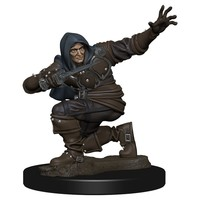 MINIS: PATHFINDER BATTLES: HUMANE MALE ROGUE