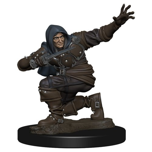 Wizkids MINIS: PATHFINDER BATTLES: HUMANE MALE ROGUE