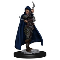 MINIS: PATHFINDER BATTLES: HUMANE FEMALE ROGUE