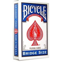 BICYCLE BRIDGE BLUE