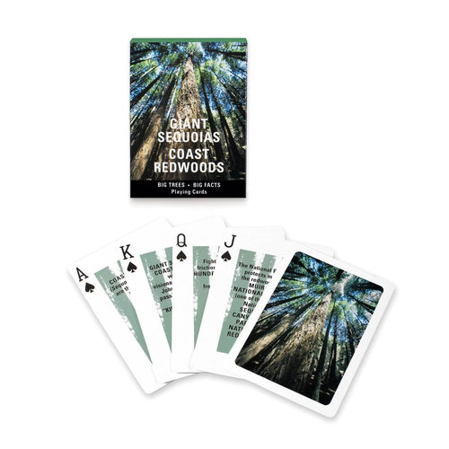 Golden Gate National Park Association GIANT SEQUOIAS CARDS