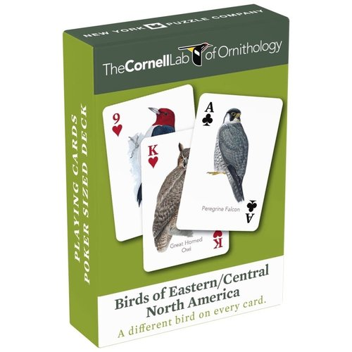 NEW YORK PUZZLE COMPANY BIRDS OF EASTERN/CENTRAL NORTH AMERICA SGL