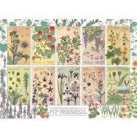 CH1000 BOTANICALS BY VERNEUIL