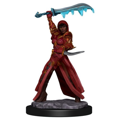 Wizkids MINIS: ICONS OF THE REALMS: HUMAN FEMALE ROGUE