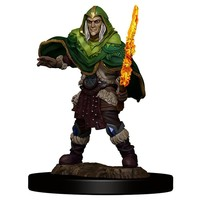 MINIS: ICONS OF THE REALMS: ELF MALE FIGHTER