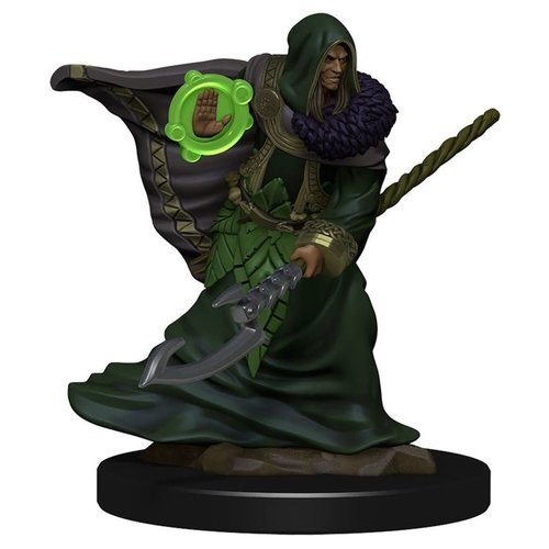 Wizkids MINIS: ICONS OF THE REALMS: ELF MALE DRUID