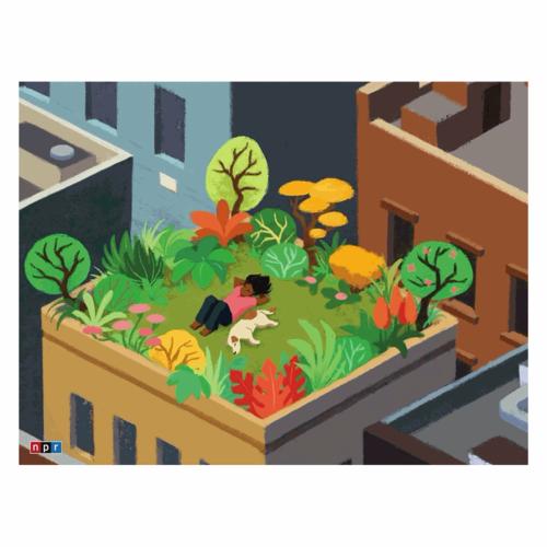 NEW YORK PUZZLE COMPANY NY500 NPR - ROOFTOP RELAXATION