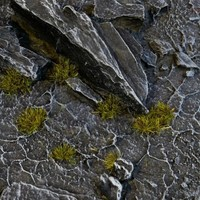 GAMERS GRASS: TINY DARK MOSS TUFTS (2mm)