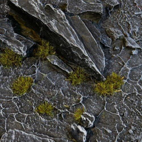 Gamers Grass GAMERS GRASS: TINY DARK MOSS TUFTS (2mm)