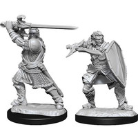 MINIS: D&D: HUMAN MALE PALADIN (SWORD & SHIELD)