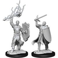 MINIS: D&D: HALF-ELF MALE PALADIN (SWORD & SHIELD)